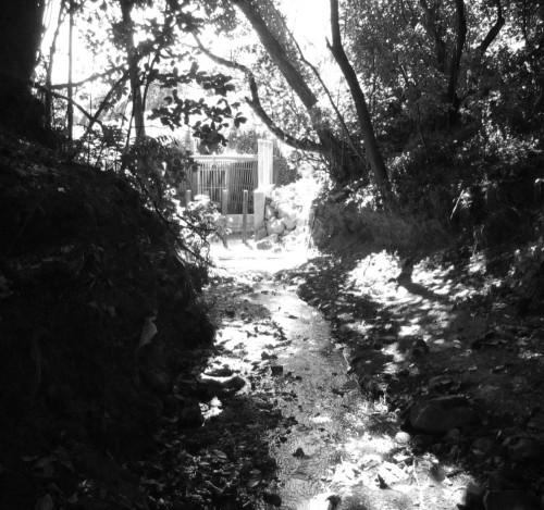 Kumutoto Stream - down the drain
