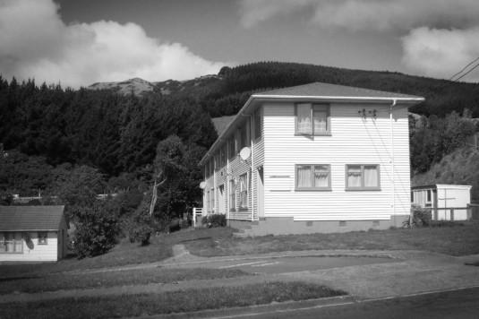 State housing, Linden