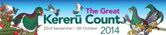 The great kereru count