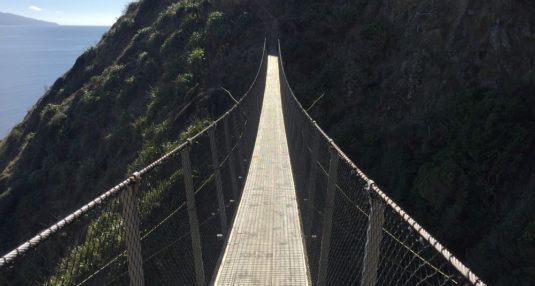Swingbridge over a chasm along the Paekakariki Escarpment track.