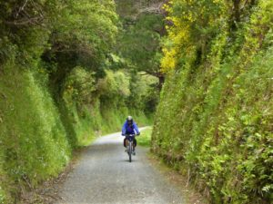 rimutaka-incline-david-heap